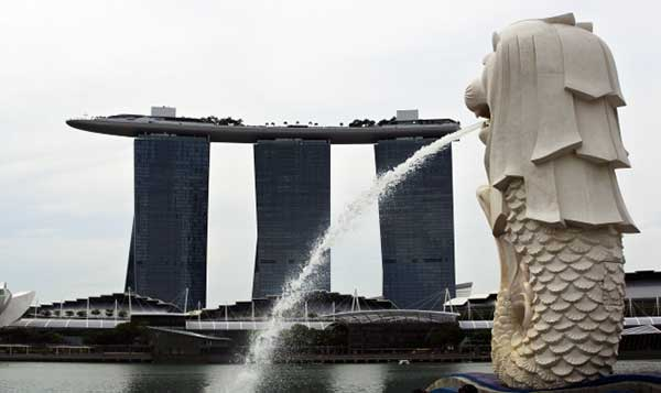 英語だけでなく、多様なコミュニケーション能力もシンガポールで磨かれた
