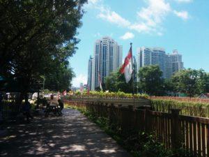 至るところにシンガポール国旗が掲げられる